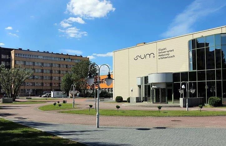 Silesia University