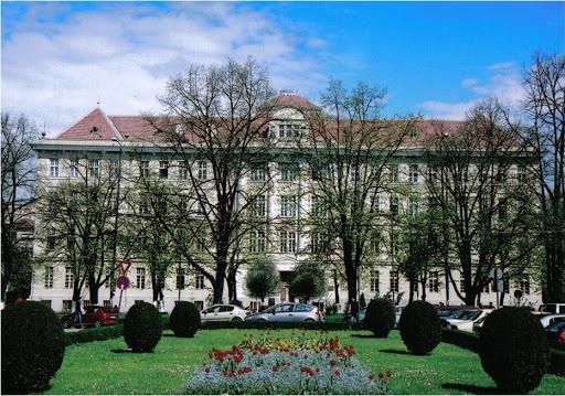 victor babes university